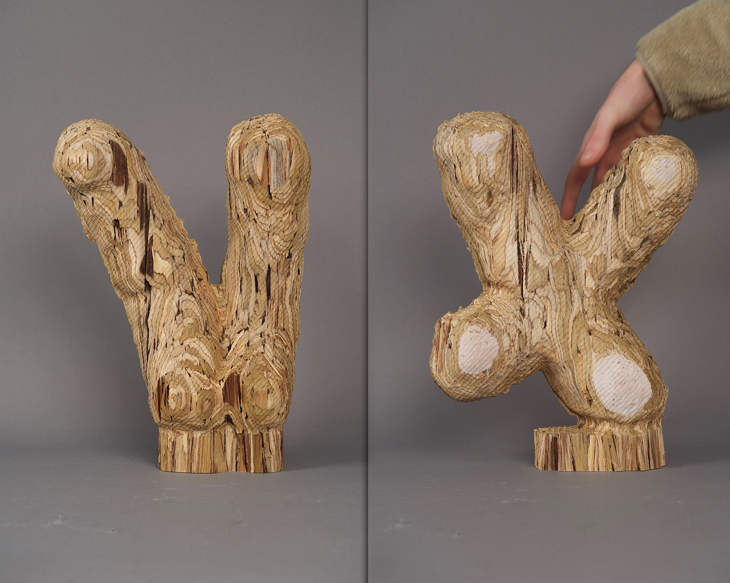 Wooden sculpture of X and Y chromosomes made from 3D cheese doodle scans